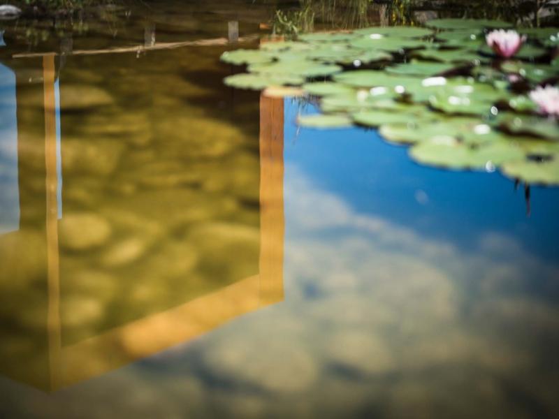 lauper-paysage-b4.jpg